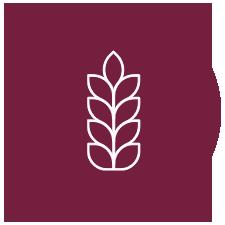 Icon for HEET Sequoia
